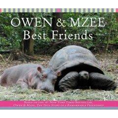 owen-and-mzee