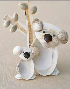 koala shells
