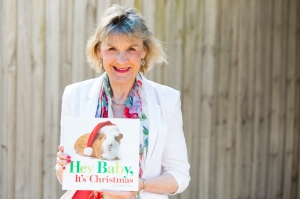 Hey Baby Christmas Launch Filed Image 4