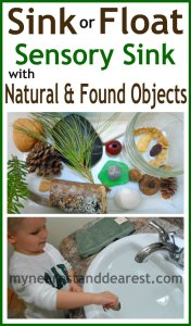Sink-or-Float-Sensory-Sink-with-Natural-and-Found-Objects