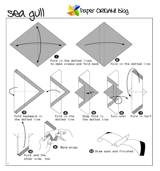 1 Origami Max Seagull